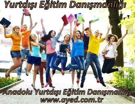 Yurtd��� E�itim Dan��manl���